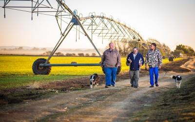 Corporate - SAB Jacobsdal Barley
