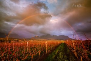 Welcome Somerset West, Western Cape
